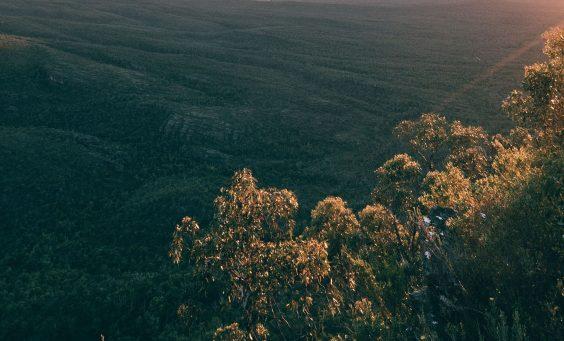 australia environment